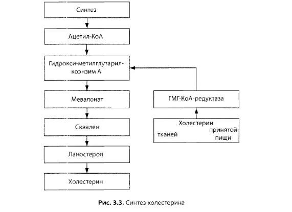 Гепатит с и диабет 2 типа