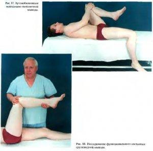 Мануальная диагностика и терапия патологии мышц тазового дна