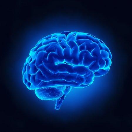 Нейрохирургия - раковые опухоли головного мозга